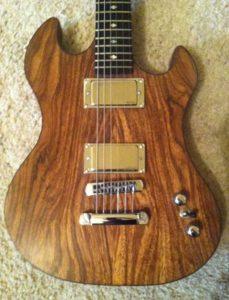 Hackl Custom Guitar #101010