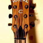 Hackl Custom Guitar #031008